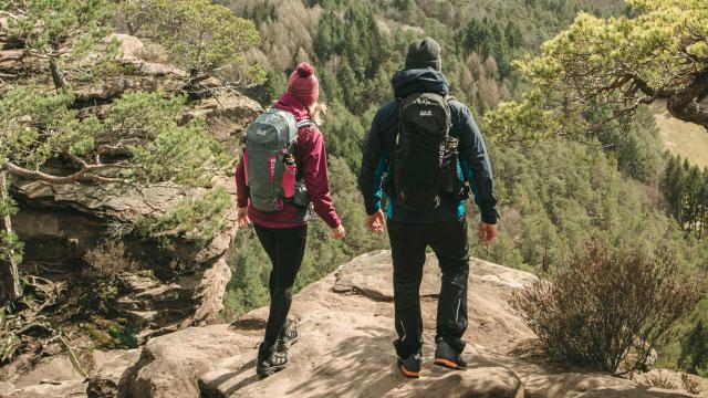 Drei Personen laufen im Wald